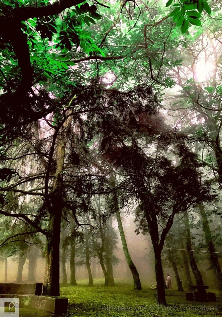 Paisagem Natural/Serra de um poeta