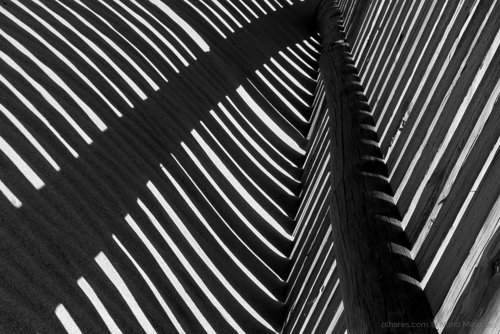 Abstrato/Simetrias de luz e sombra