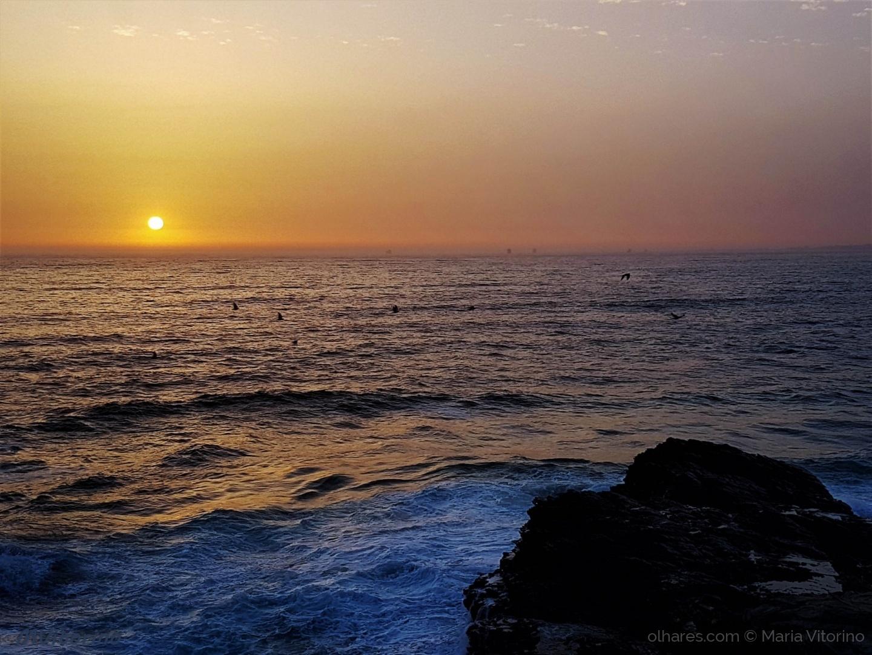 Paisagem Natural/Voz do mar (ler sff)