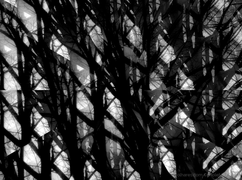 Abstrato/DA LUZ E DA SOMBRA (leia-se)
