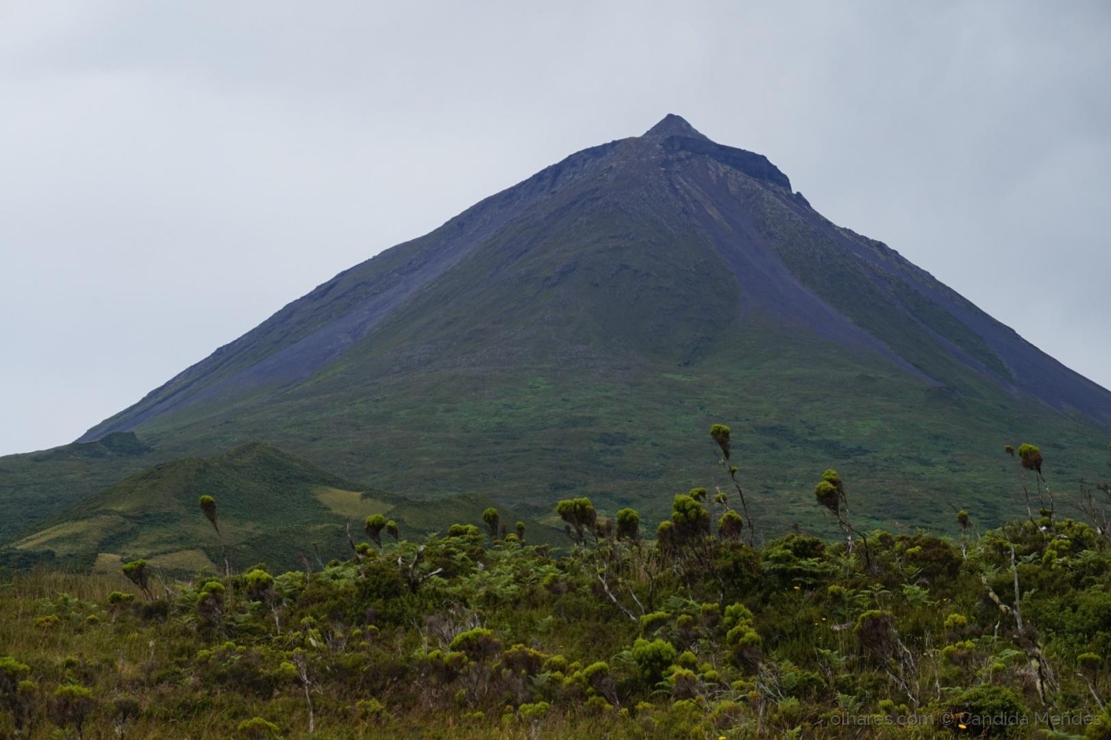 Paisagem Natural/Montanha do Pico