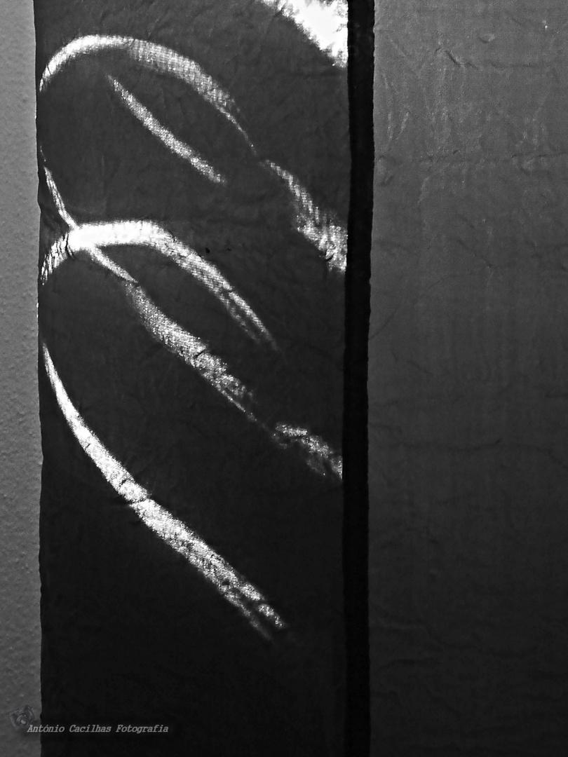 Abstrato/Abstrato