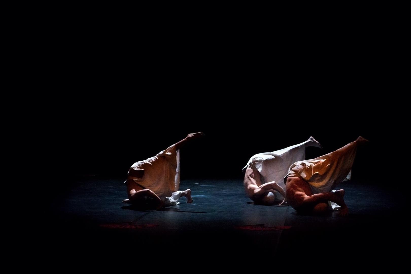 Espetáculos/Deaidance project
