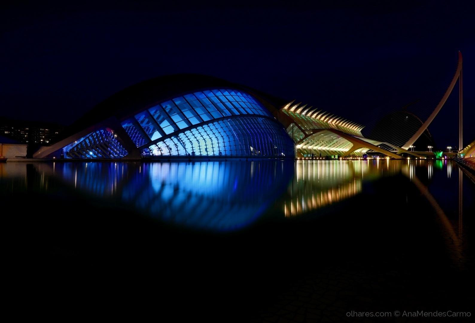 Arquitetura/Cidade das Artes e da Ciencia