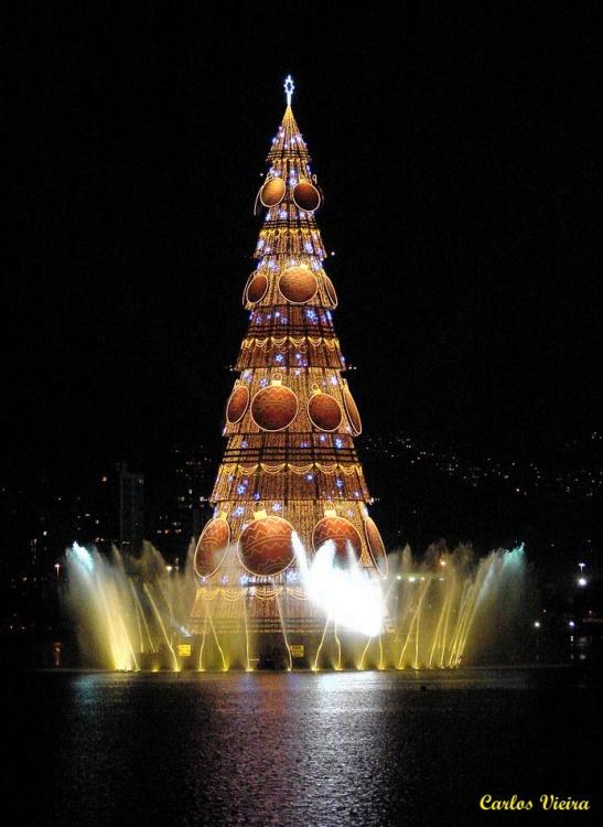 Paisagem Urbana/Árvore de Natal da Lagoa.