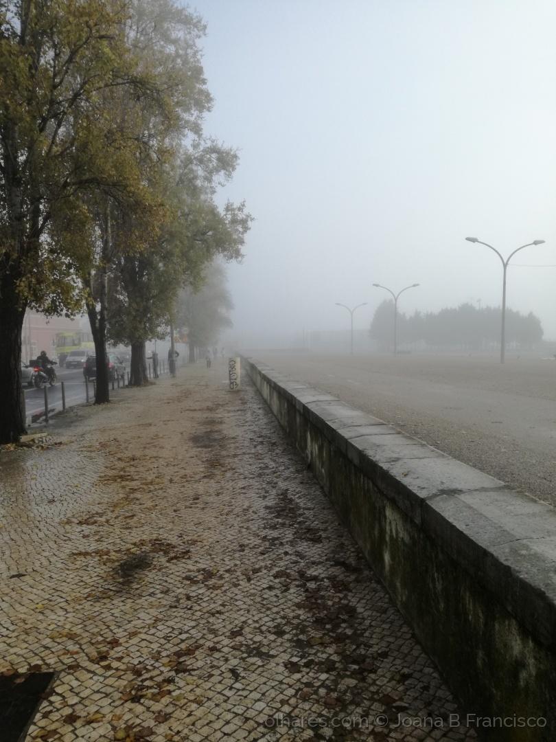 Abstrato/Do nevoeiro