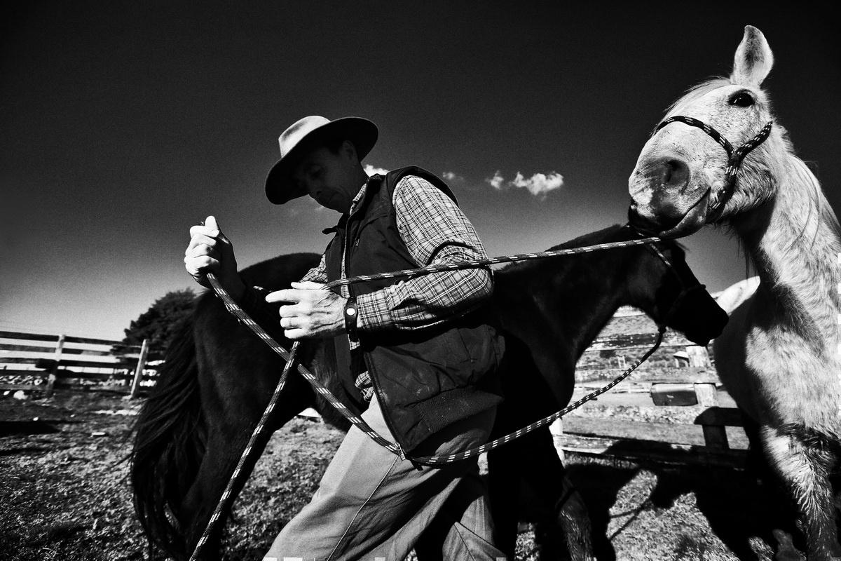 Fotojornalismo/Campos