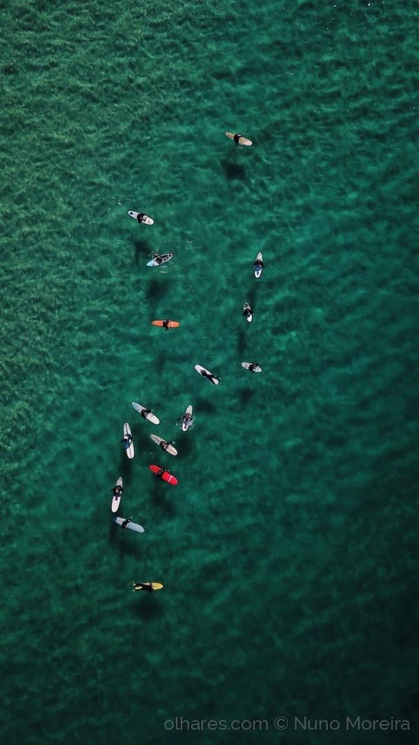 Desporto e Ação/#surf