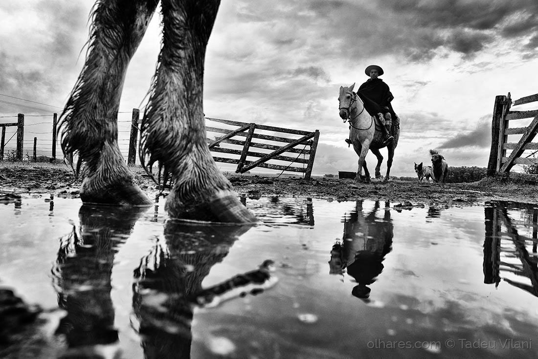 Fotojornalismo/Rumo