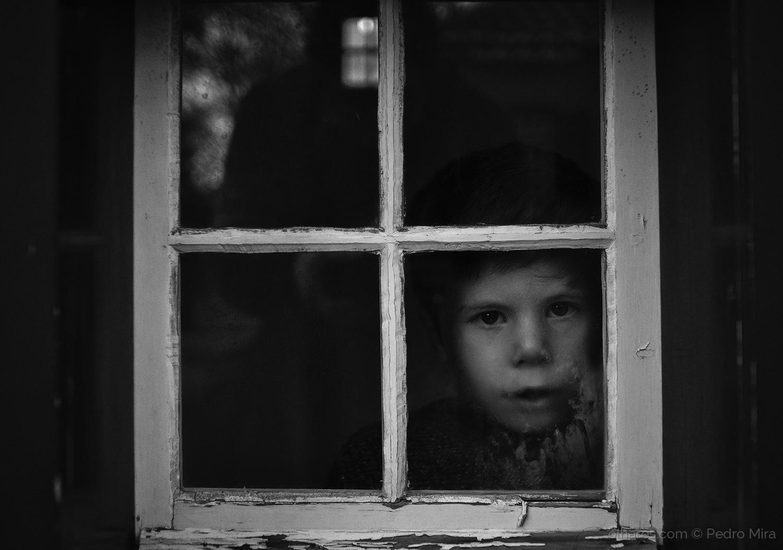 Retratos/O miudo e a janela