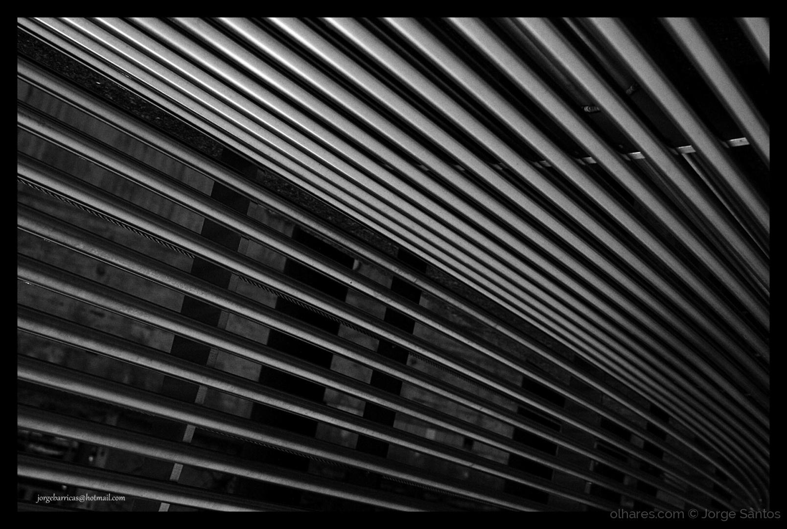 Abstrato/Linhas curvas