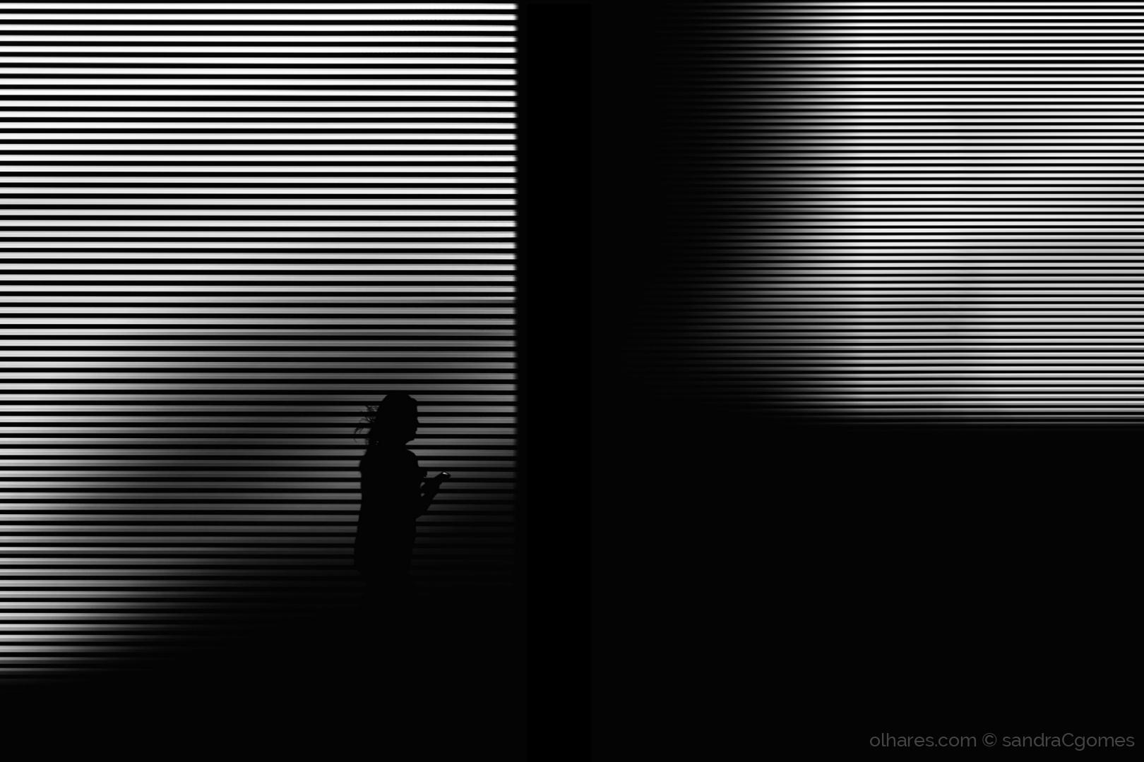 Abstrato/53 - 2019