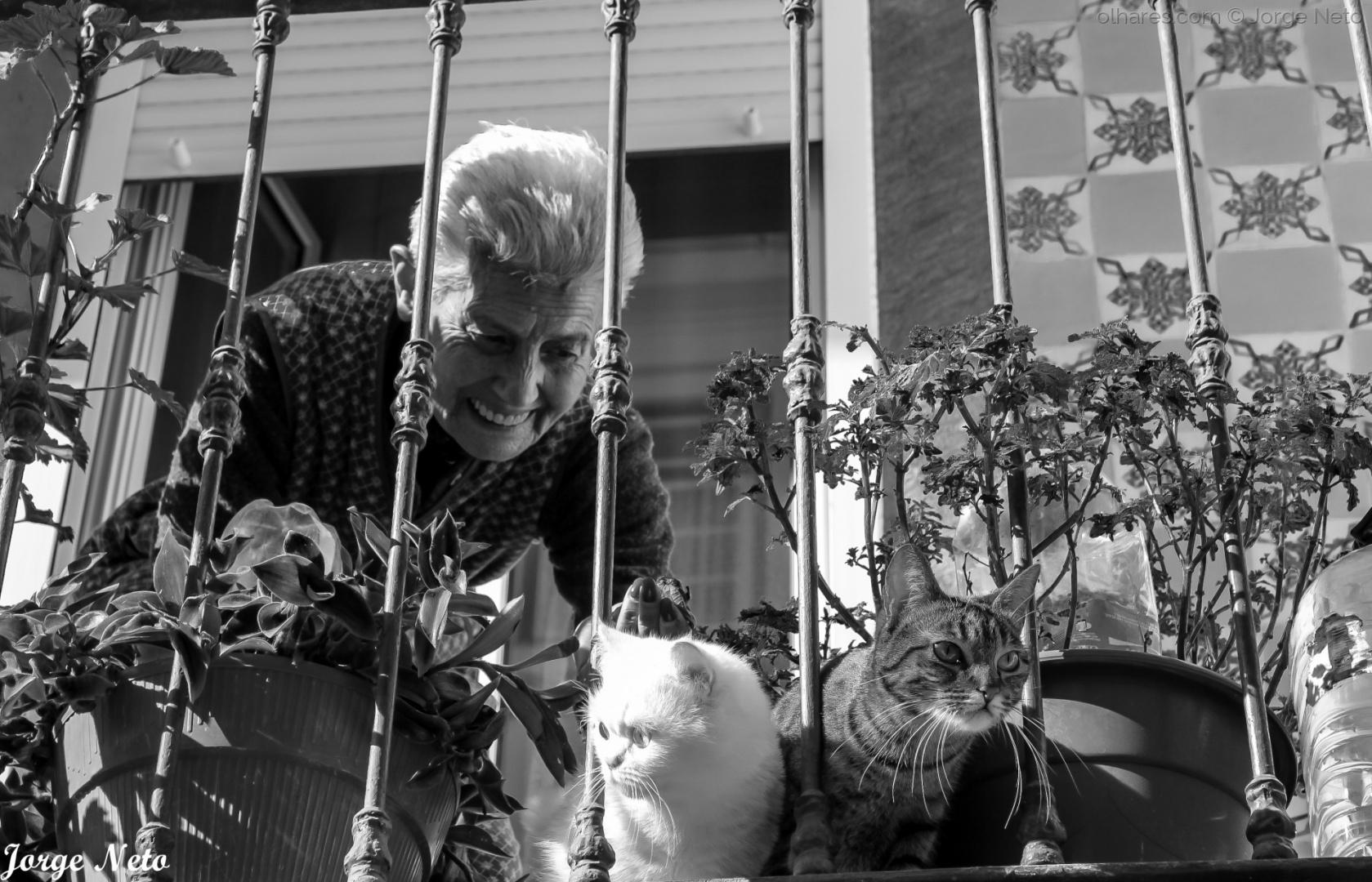Fotojornalismo/A Senhora dos Gatos