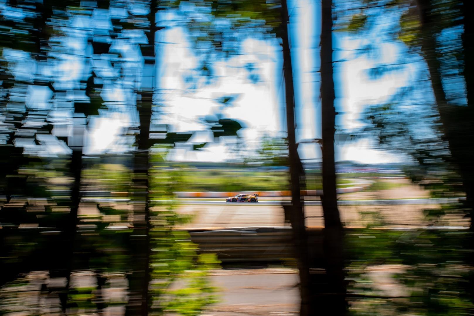 Desporto e Ação/Through the trees