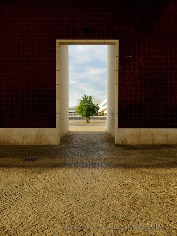 Fotojornalismo/Debaixo da pala do Siza (LER)