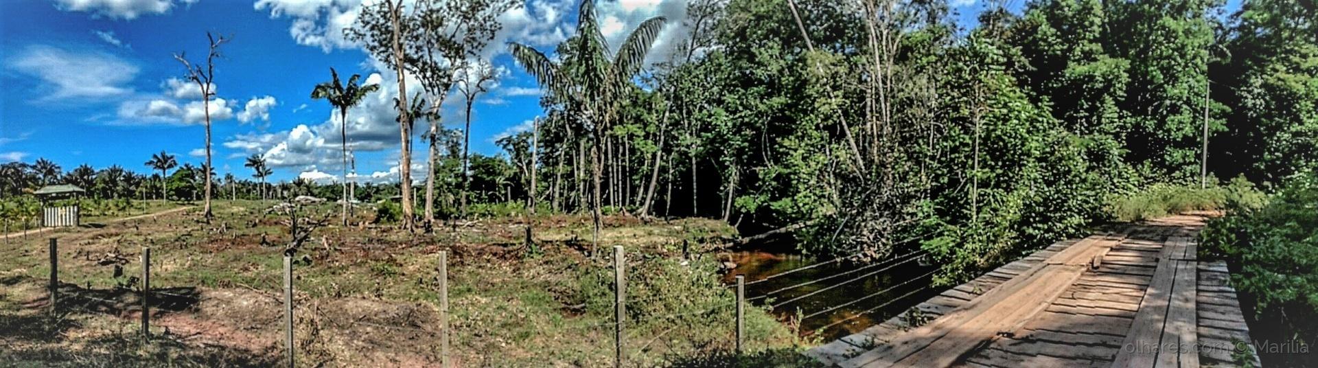 Paisagem Natural/Uma panorâmica do caminho da fazenda.