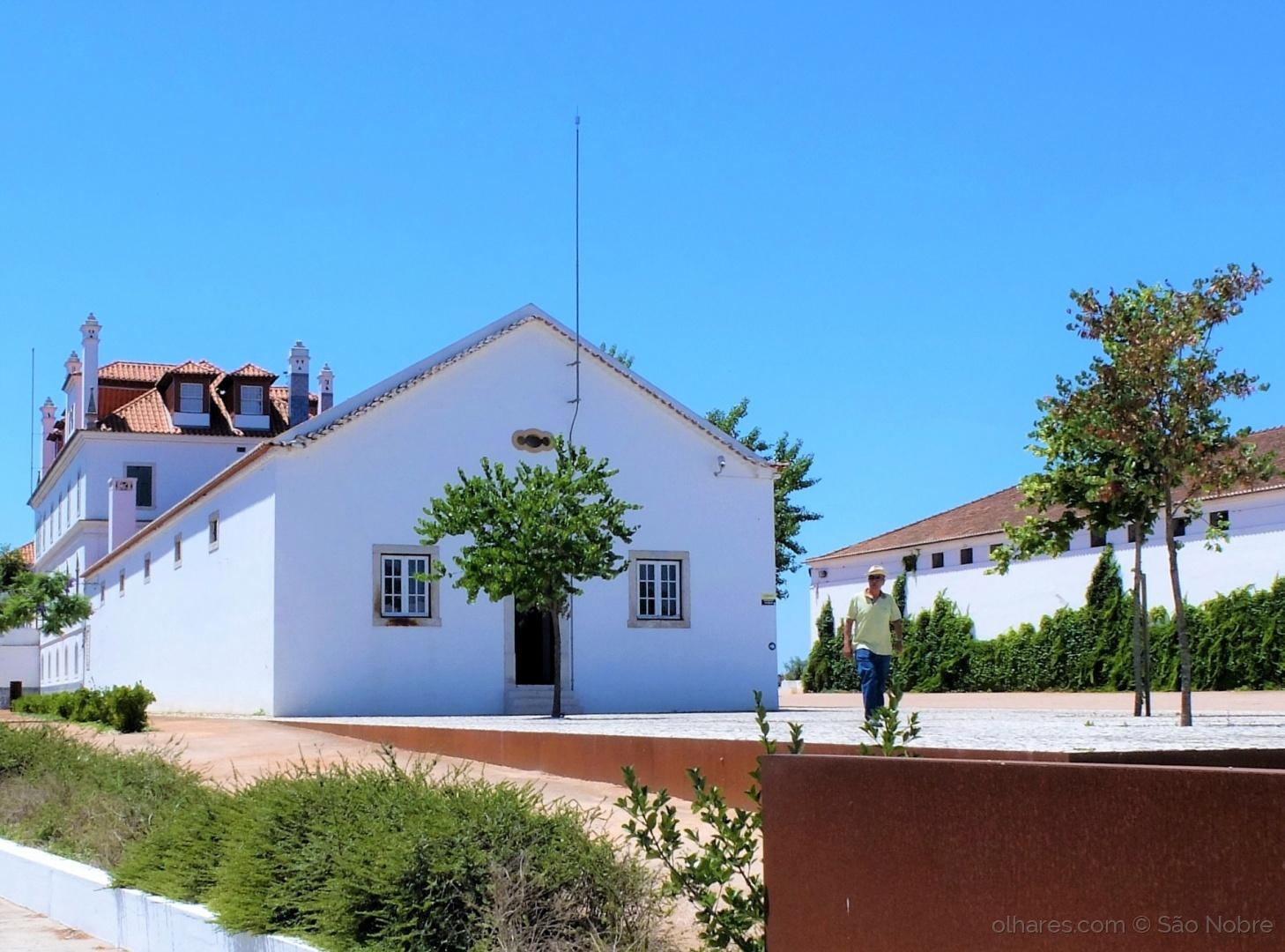 História/Casa dos Patudos
