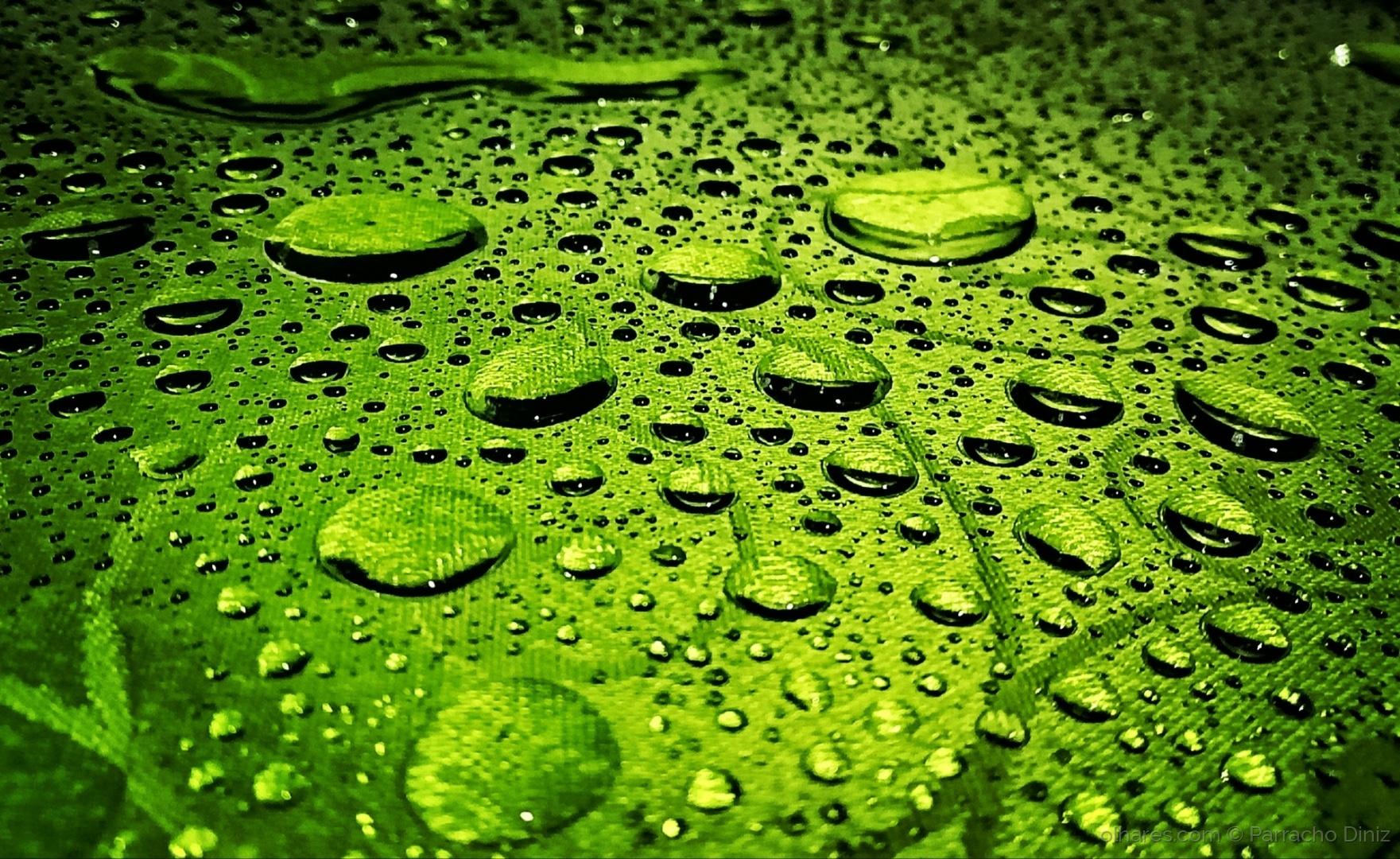 Abstrato/GREEN RAIN