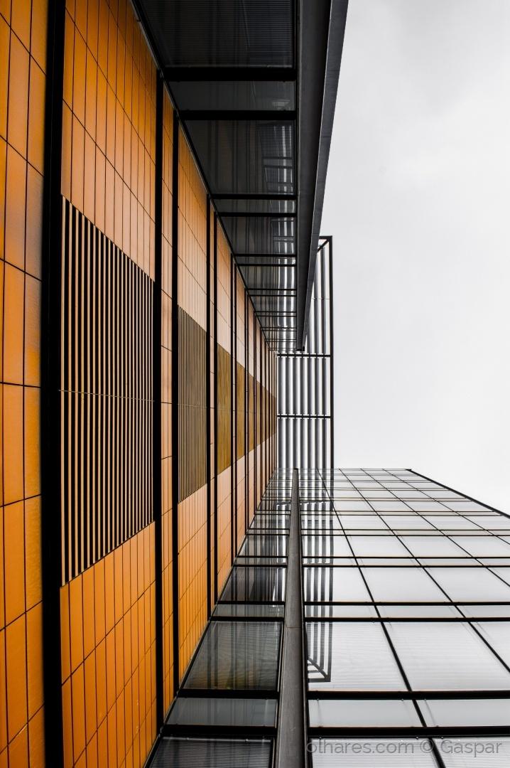 Arquitetura/RISCAS PERSPECTIVA