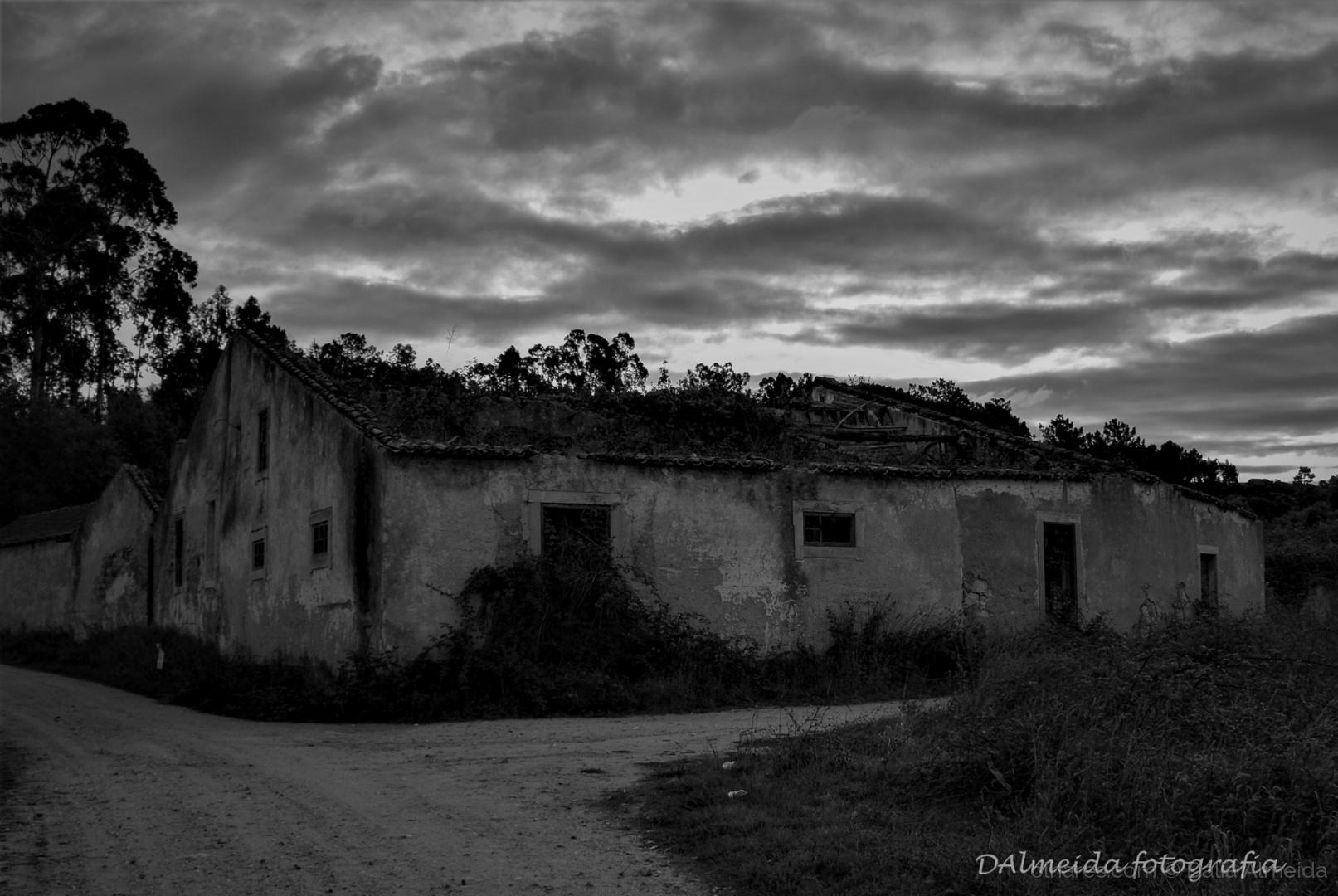 Gentes e Locais/Ruinas II