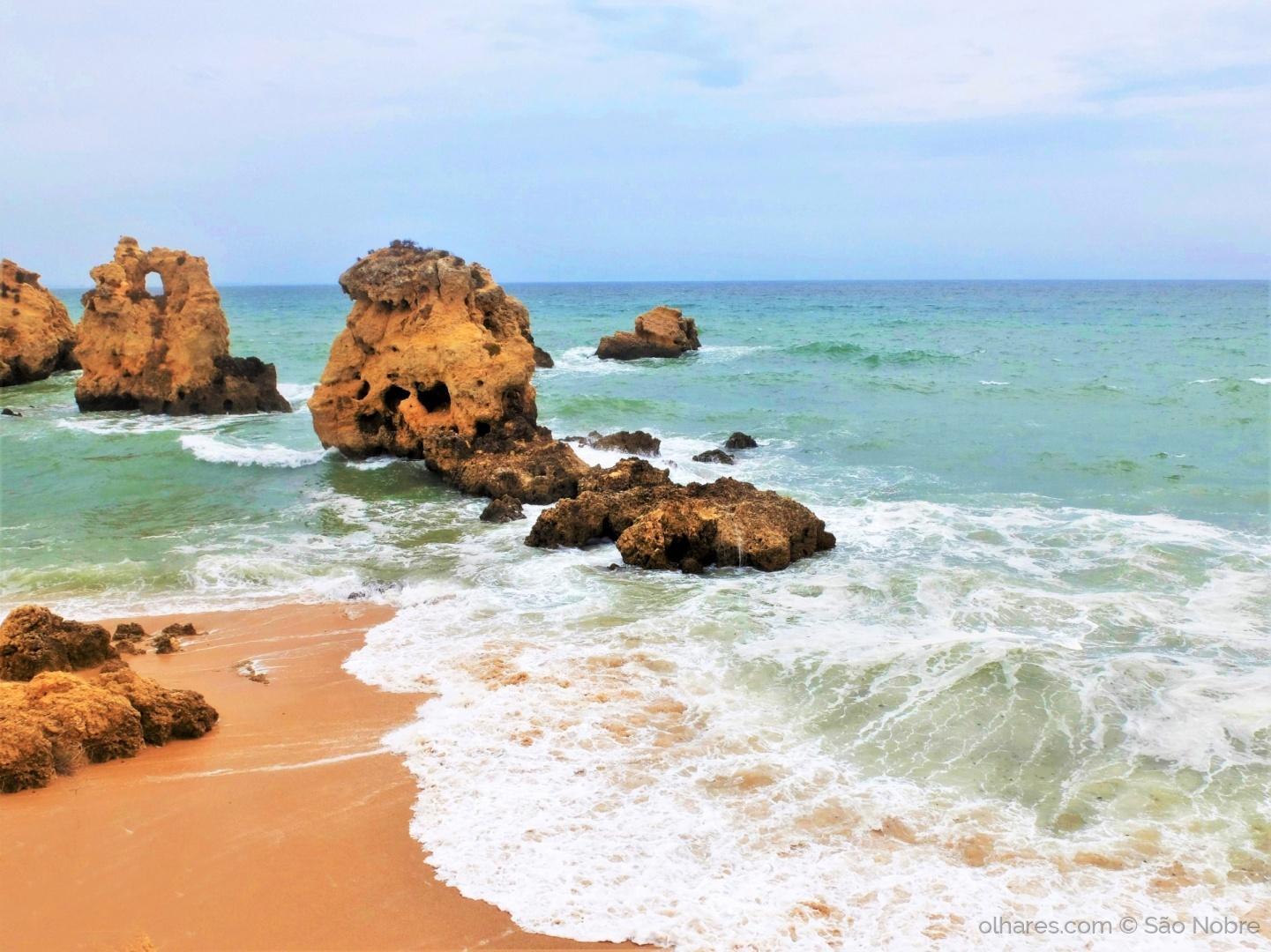 Paisagem Natural/ Praia dos Arrifes
