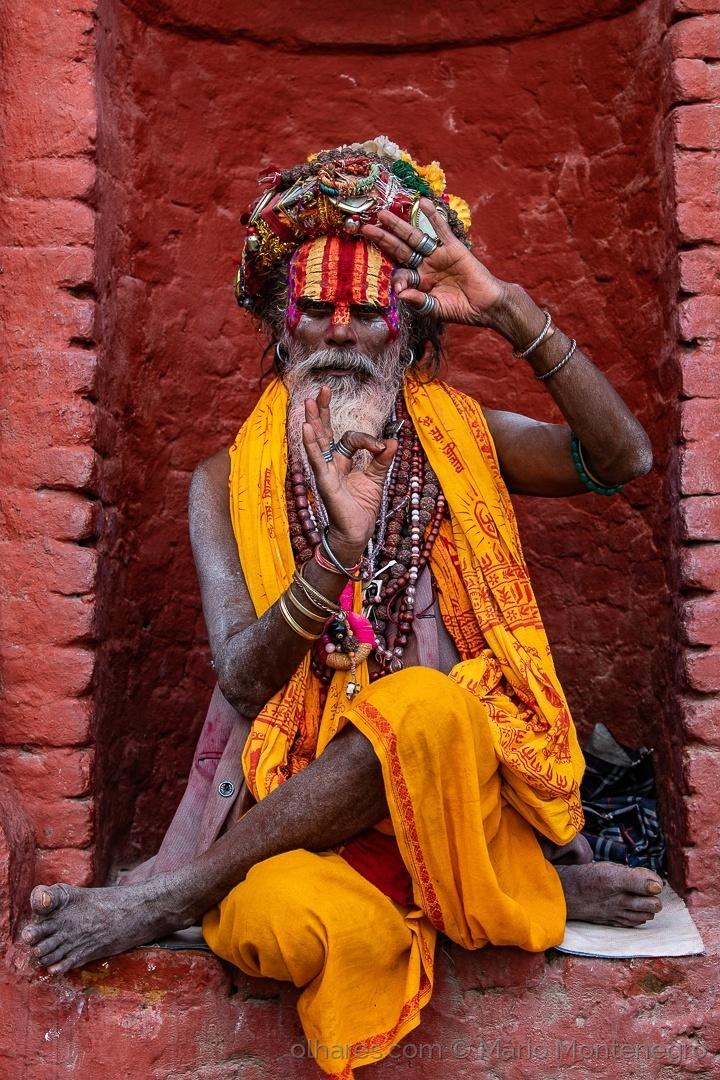 Retratos/O Sacerdote de Bagmati