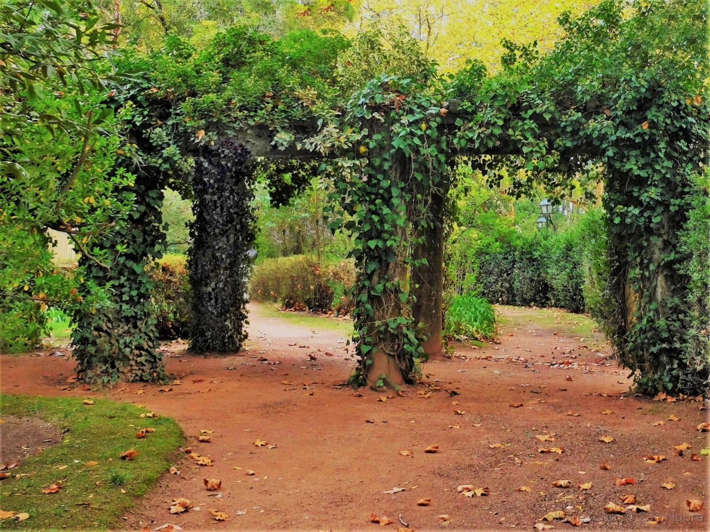 Paisagem Urbana/Outono no Parque