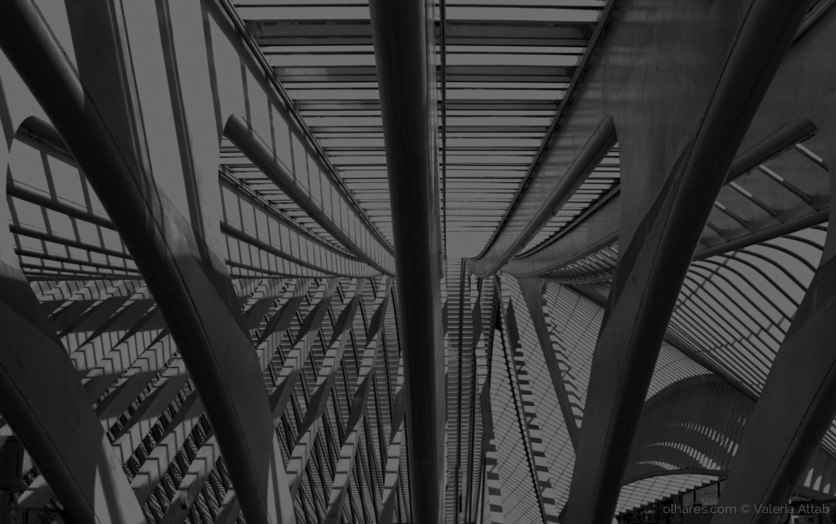 Arquitetura/A estrutura...