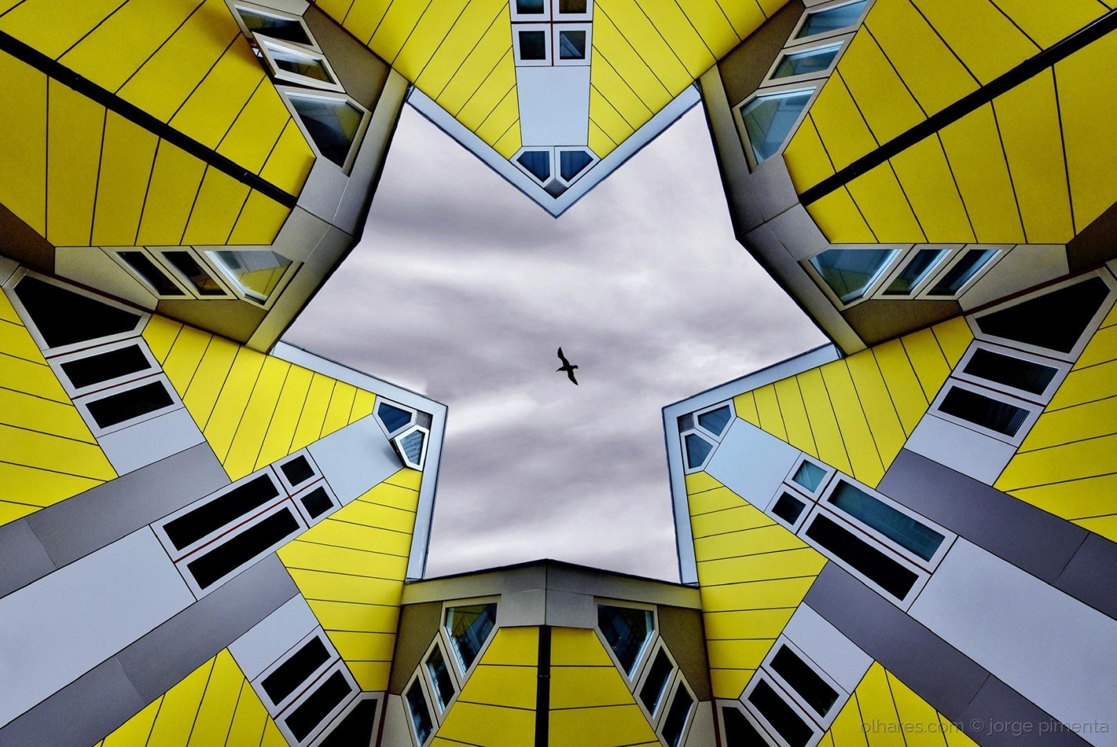 Arquitetura/The yellow brick road