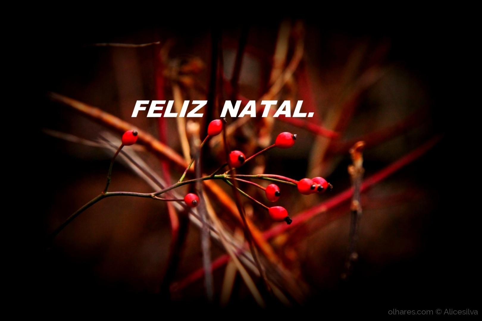 Outros/FELIZ NATAL:::::::::::