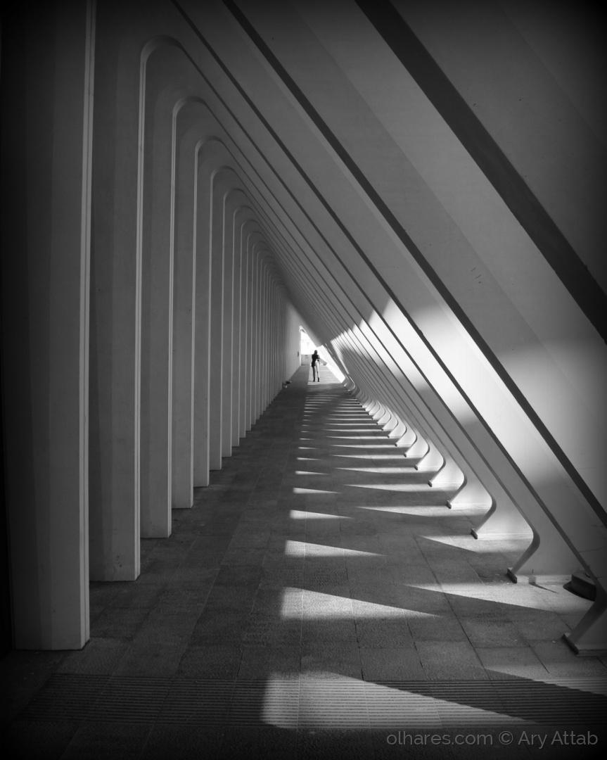 Arquitetura/Projeções