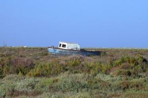 Paisagem Natural/Barco em terra