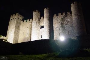 /Castelo de Obidos a noite