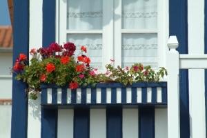 Paisagem Urbana/Outra Floreira