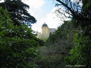 /Palacio #2
