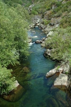 Paisagem Natural/Rio Tuela
