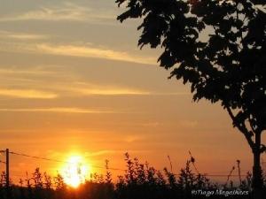 /Por do sol prometido...