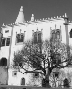 /Palacio da Vila #2