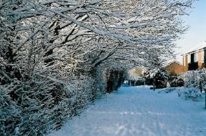 /Inverno Britanico