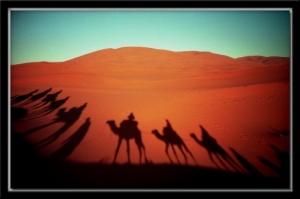 Outros/Sombras do Sahara