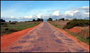 Paisagem Natural/Estrada sem Fim