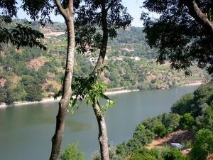 Paisagem Natural/Rio Douro