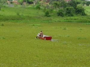 /Lago verde