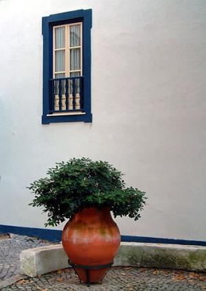 Paisagem Urbana/Vaso com Janela