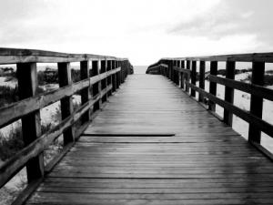 /This way, follow me...