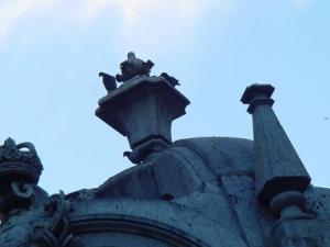 Paisagem Urbana/Reino dos Pombos