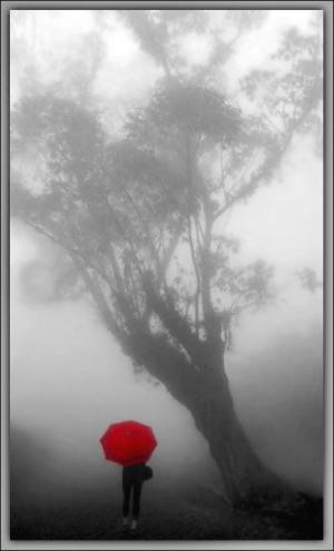 /Caminhando no Nevoeiro