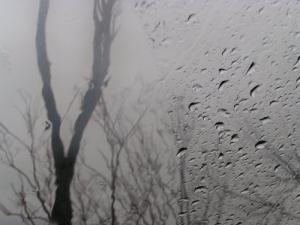 /dupla face da chuva