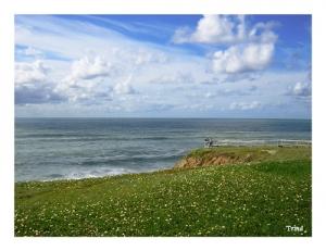 Paisagem Natural/Campo ao mar