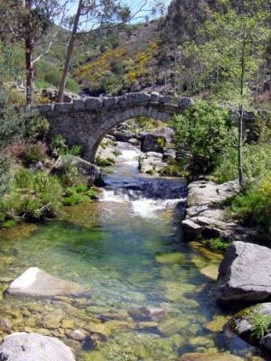 /A Ponte no Regresso